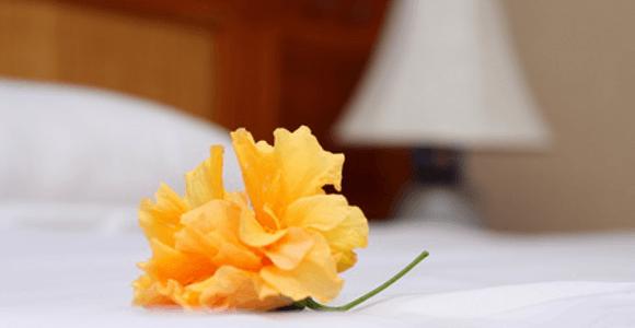 La importancia del housekeeping en el hotel (III)